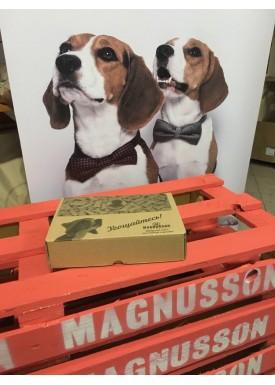 Собери Magnusson Box c бесплатной доставкой за 5 рублей!