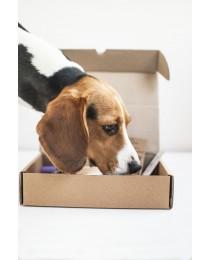 Собери свой Magnusson Box - Коробка с пробниками и бесплатной доставкой по Беларуси